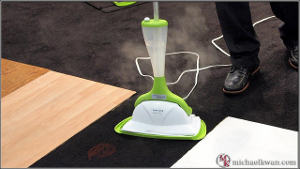 Cleaning With a Steam Mop