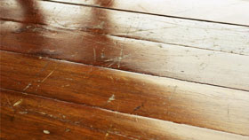 Visible Scratches on Wood Floor