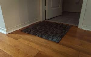 Floor Mat on Path to The Washroom